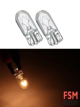 T10 Dipsiz Halojen Ampul Gün Işığı 12 Volt - W5W
